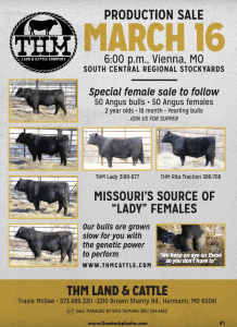 THM Production Sale @ South Central Regional Stockyards | Vienna | Missouri | United States