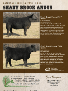 Shady Brook Angus Sale @ At the ranch | Lexington | Alabama | United States
