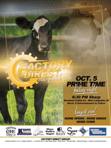 Factory Direct Elite Female Sale @ Horstman Cattle Co. | West Lafayette | Indiana | United States