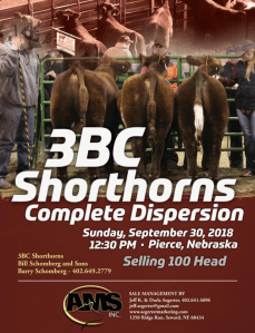 3BC Shorthorns Complete Dispersions @ Pierce | Nebraska | United States