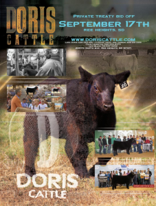 Doris Cattle Private Treaty Bid Off @ Ree Heights | South Dakota | United States