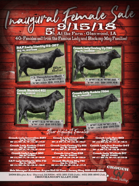 Crouch Angus Valley Female Sale on 9/15/18