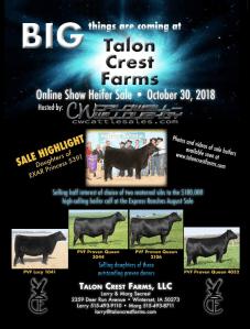 Talon Crest Farms Online Show Heifer Sale