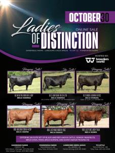 Ladies of Distinction Online Sale