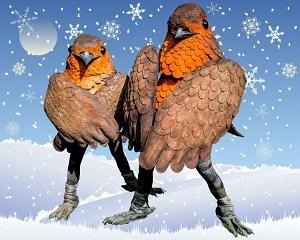 robin-redbreast-bird-entertainers