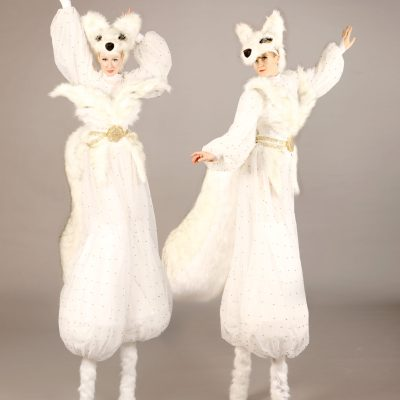 The Snow Foxes
