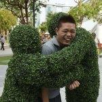 Human Hedges