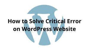 How to Solve Critical Error on WordPress Website