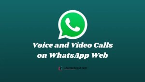 How to Make Voice and Video Calls on WhatsApp Web
