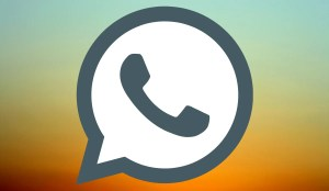 WhatsApp to delete accounts of GB and Plus users