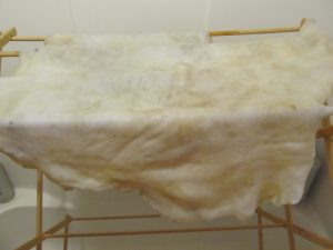 16 Drying after Membraning
