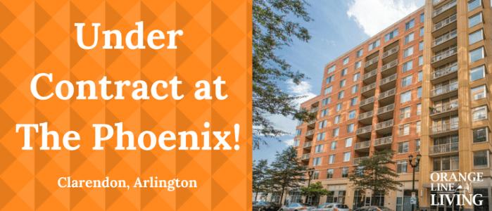 best realtor the phoenix arlington