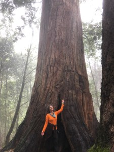 Michele in front of a large redwood tree while out on a hike