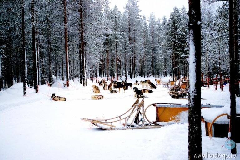 IMGP8688โรวานีมี่ฟินแลนด์