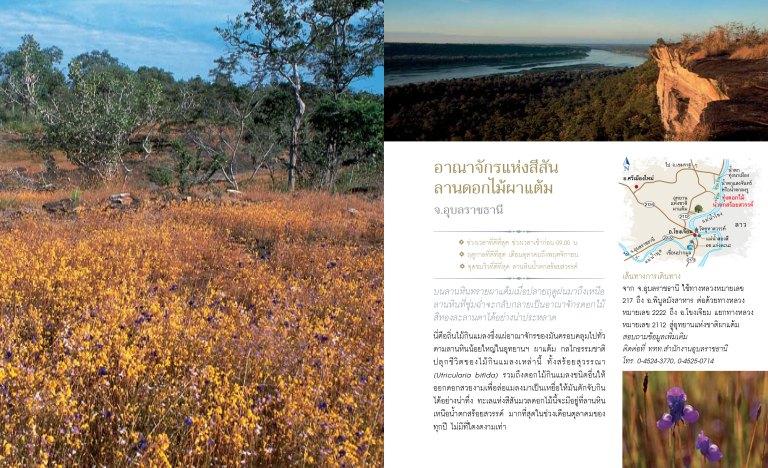 12เดือน7ดาว9ตะวัน-มหัศจรรย์เมืองไทย-ต้องไปสัมผัส-25