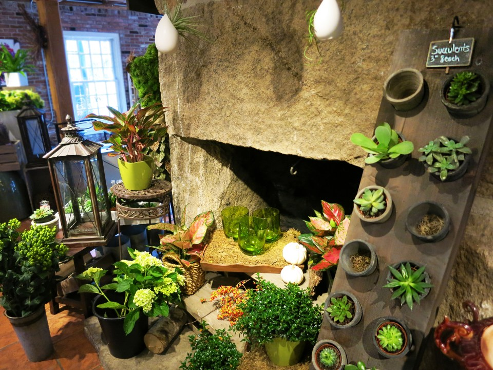 Succulents and other assorted plants and greenery in front of a stone fireplace in Studio 539 Flowers located on Wickenden Street in Providence, RI