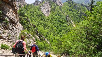 Permalink to: Seoul Hiking Group