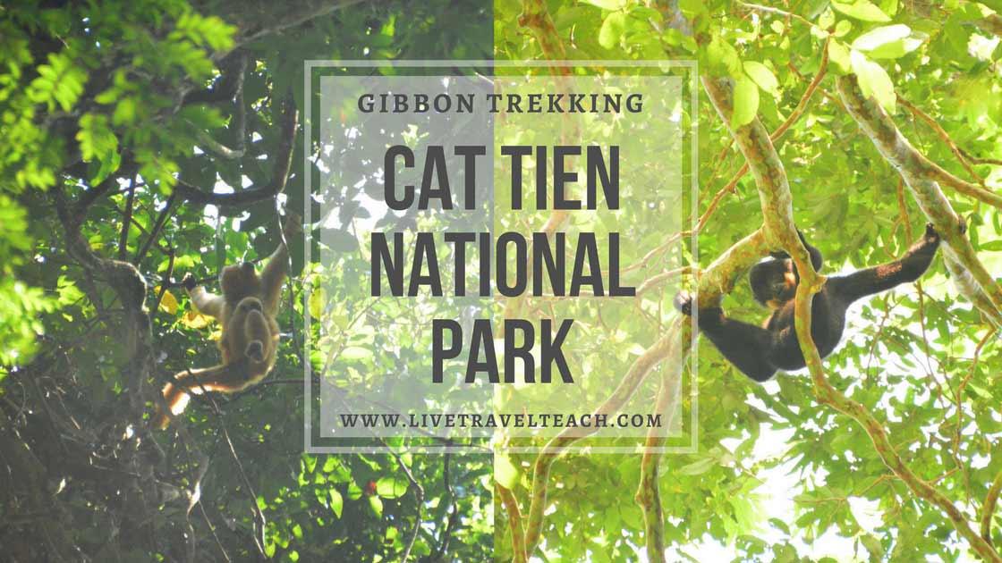 Cat Tien National Park - Trekking with wild gibbons