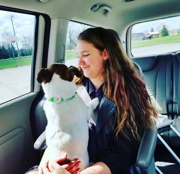 O poveste cu final fericit pentru un câine fără nas! Priviți cum arată acum!