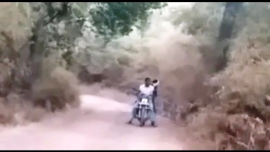 VIRAL VIDEO, बाघों, बाइक, नेशनल पार्क