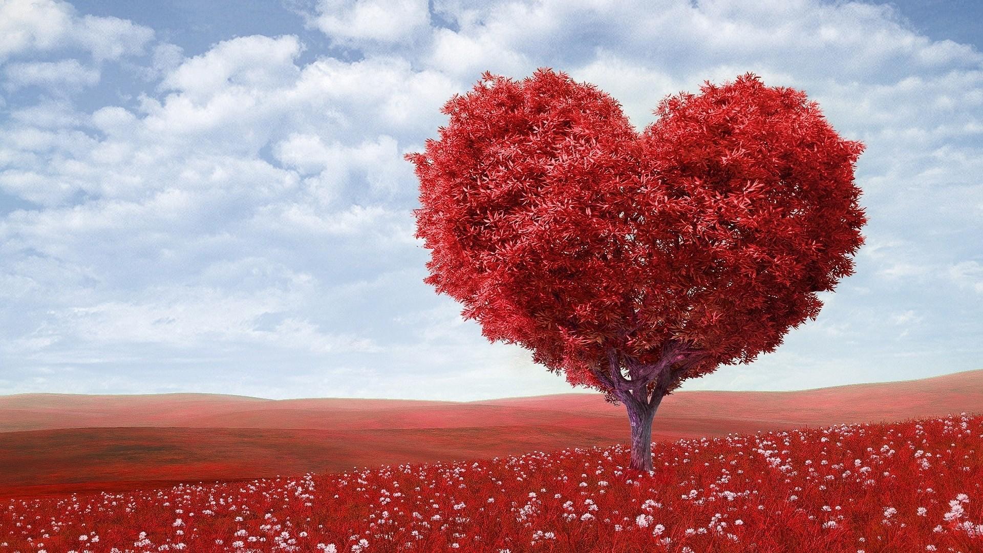 Love Background Wallpaper Hd 2020 Live Wallpaper Hd
