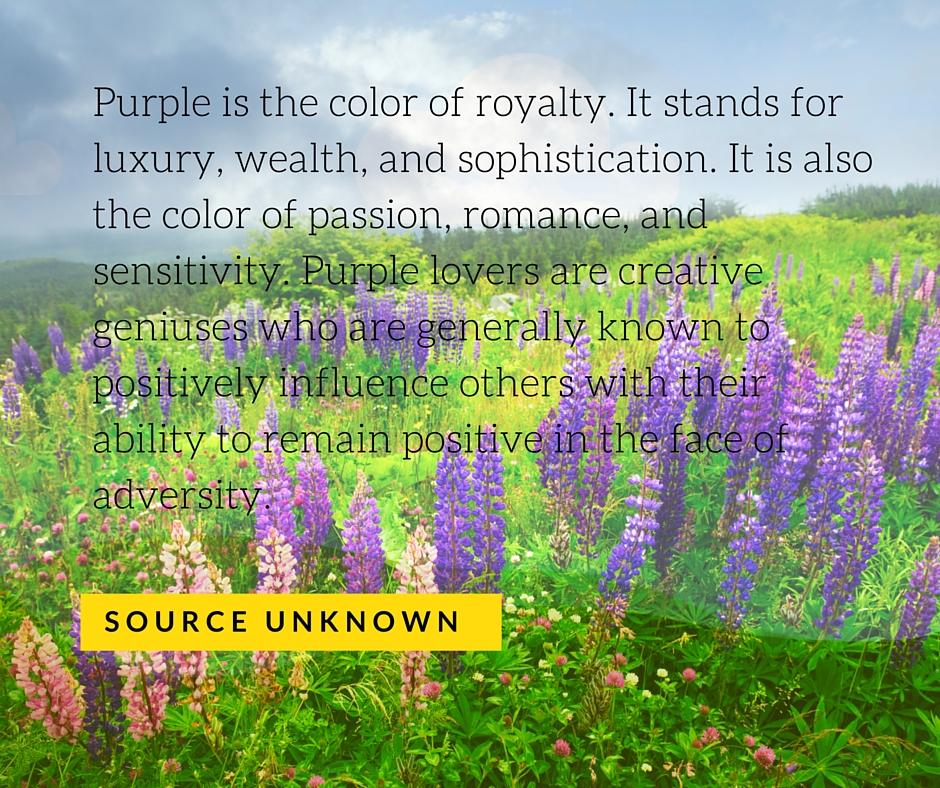 The-Color-Wheel-Magnificent-Purple-Reign-Five-LiWBF