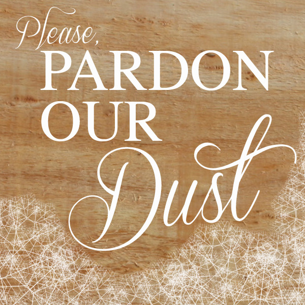 Pardon Our Dust & Cobwebs