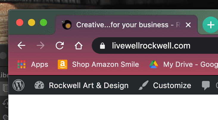 screenshot of a secure url in your browser window upclose