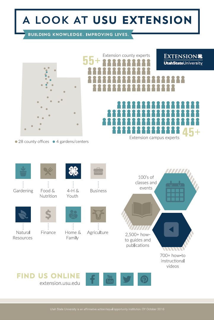 extension-infographic