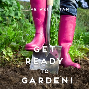Get Ready to Garden Blog