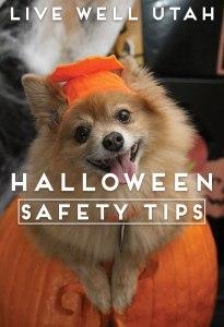 Halloween-Doggie2