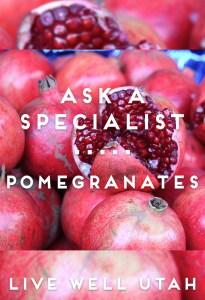 PomegranatePod