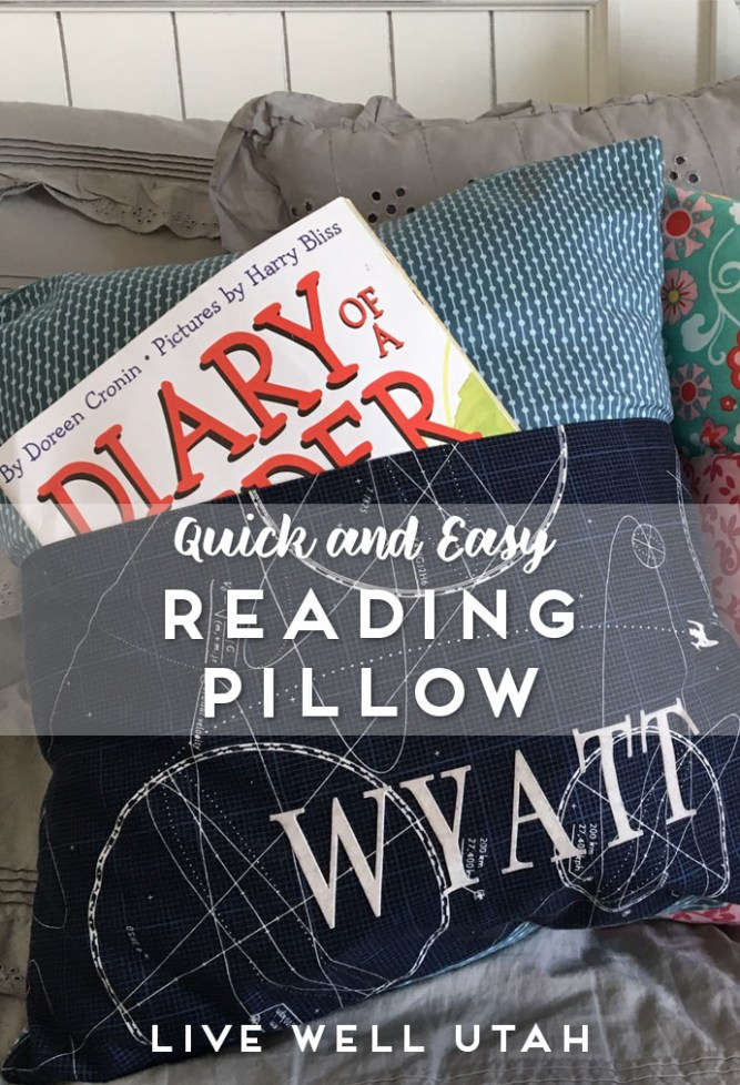 Reading Pillow Graphic