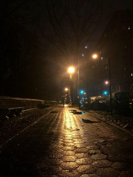 Central Park on a Rainy Night