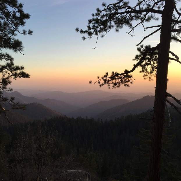 Sequoia National Park at Sunset, Ca.
