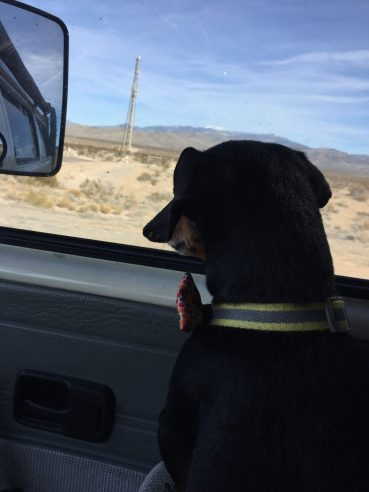 He'd spend hours on long drives just staring out the window. 2015