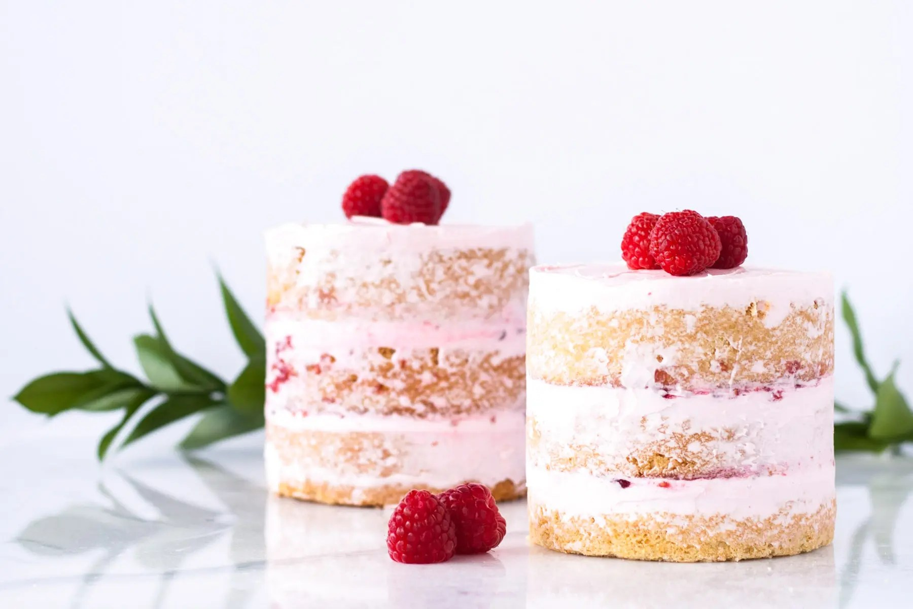 Raspberry Vanilla Mini Cakes Liv For Cake