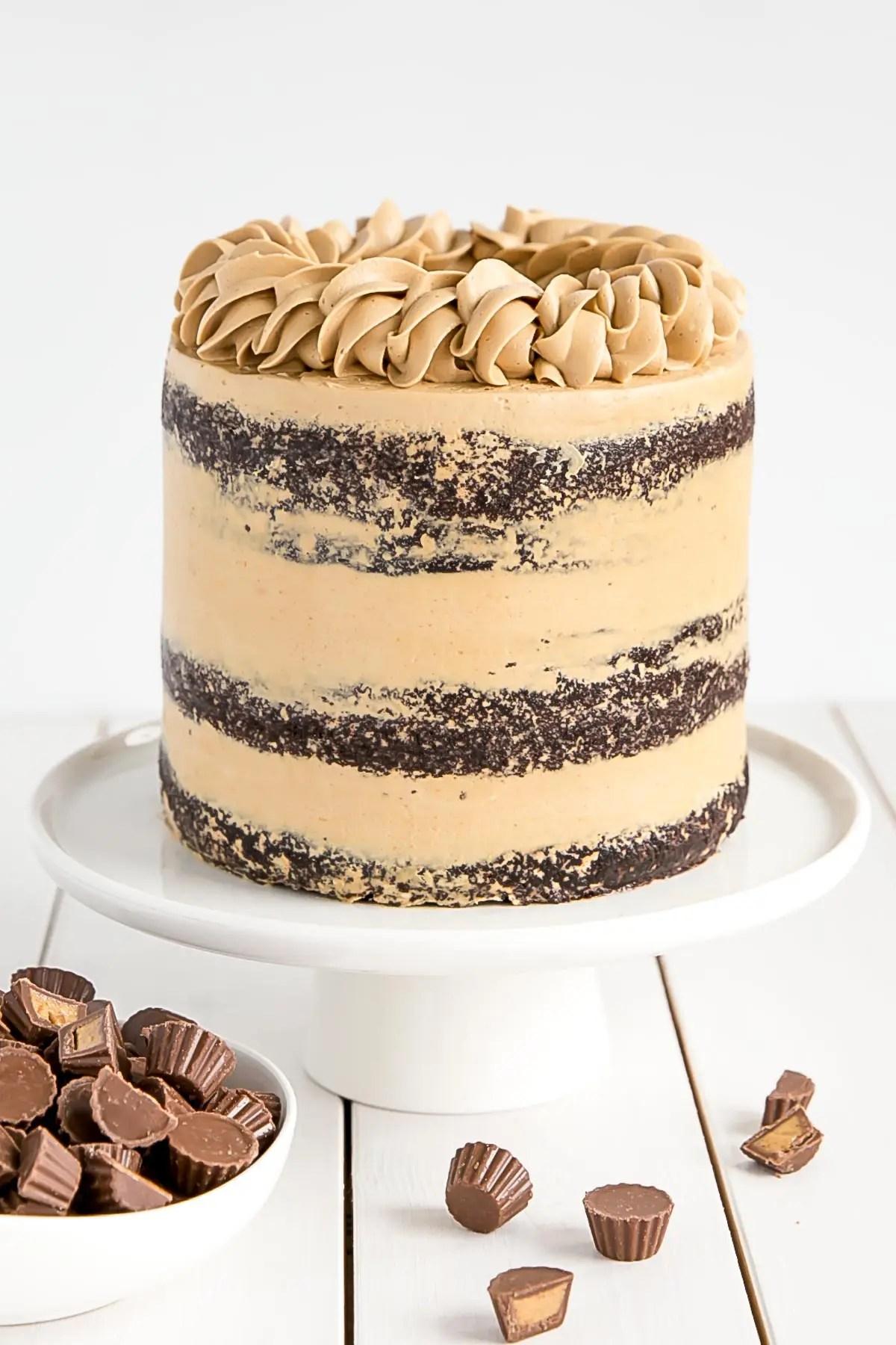 Peanut Butter Chocolate Cake Liv For Cake