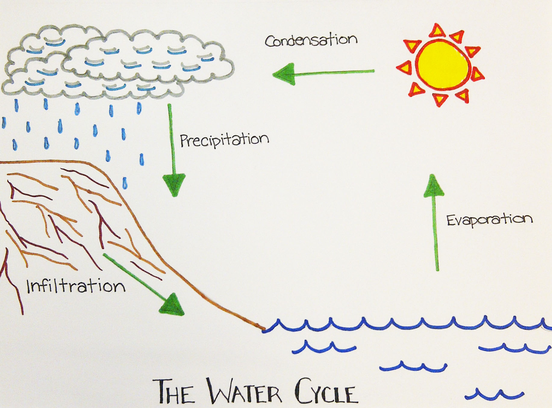 water cycle diagram with explanation rv power plug wiring visual comm livhilton