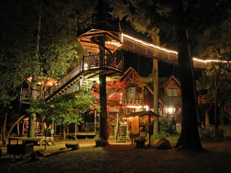 Awesome Treehouse Designs For Your Backyard