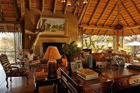 Take a Walk on the Wild Side - Safari Decorating