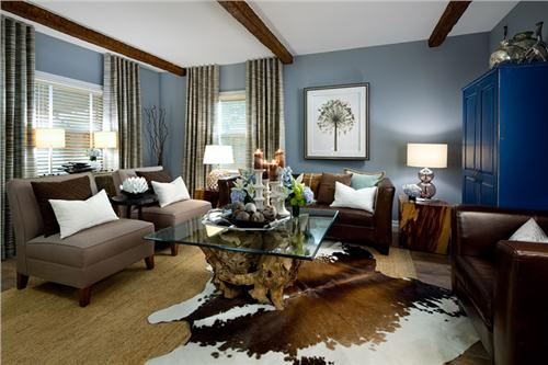 brown and blue interior color schemes