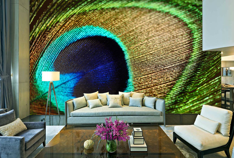 Inspiring Peacock Beauty for Your Home
