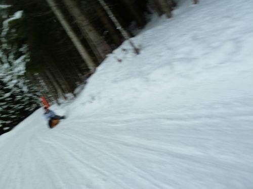 Sleding down the Alps