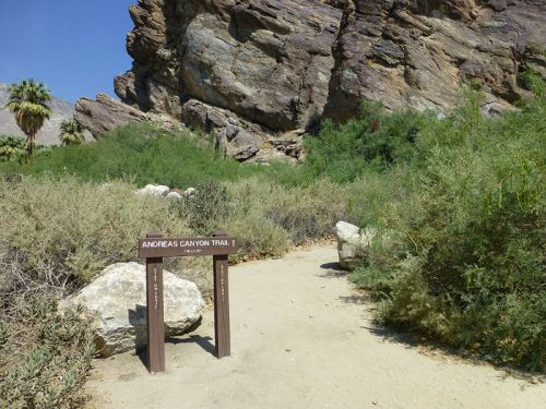 Beginning of the Andreas Canyon Trail