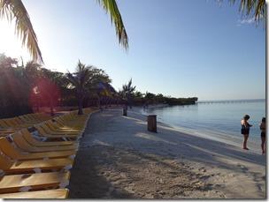 3 Honduras Mahagony Bay 1