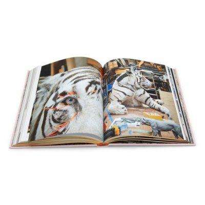 boek darwin, sinke & van Tongerenboek darwin, sinke & van Tongeren