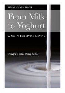 From-Milk-to-Yoghurt