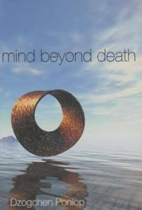 mind-beyond