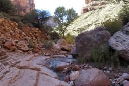 day-5-creek